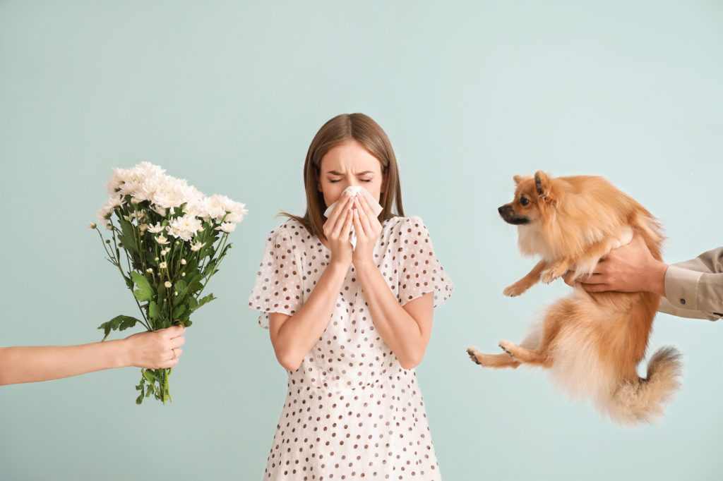 People giving flowers and dog to young woman suffering from allergies on light background